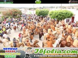 18a_festa_dos_vaqueiros_de_ibiquera_2014 (194)