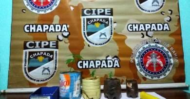 #ChapadaDiamantina: Ação da Cipe Chapada apreende drogas na zona rural de Mucugê – Ba