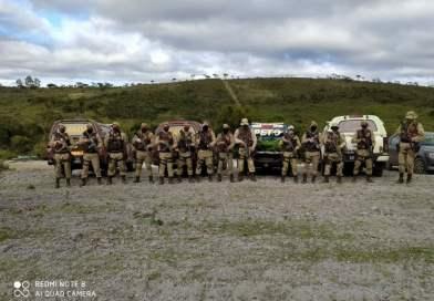 Operação da CIPE, RONDESP e PETO encontra roça de maconha em Mucugê