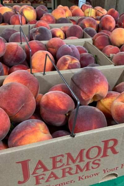 Jaemor Farms Peaches Sellect Realty Lake Lanier Realtor