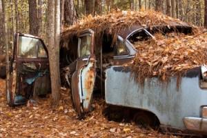 Tampa-Bay-junk-Car-Buyer