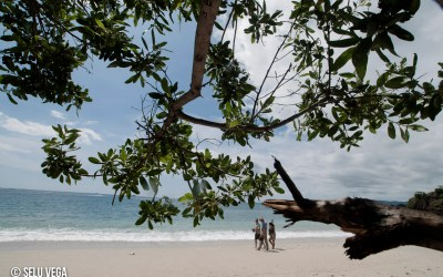 Paisajes de Costa Rica Una selección de paisajes de uno de los países más interesantes y verdes del mundo.