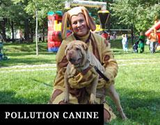 Lutte contre la Pollution Canine à Montréal