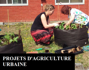 Projets d'agriculture urbaine