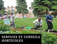 Services et Conseils Horticoles