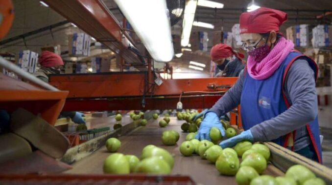 El Banco Central de la República Argentina sancionó a 4 empresas exportadoras por no ingresar los dólares al país