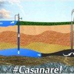 Catástrofe ambiental en Casanare: ¿San Pedro, monocultivos o petroleras?