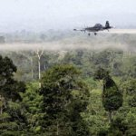 Fumigaciones en la Perla Amazónica