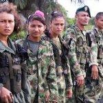 Ejército ataca a las FARC. En peligro el cese al fuego