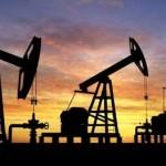 43 bloques petroleros en Caquetá amenazan la Amazonia