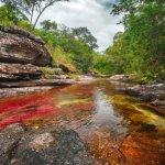 Licencias ambientales: crimen nacional
