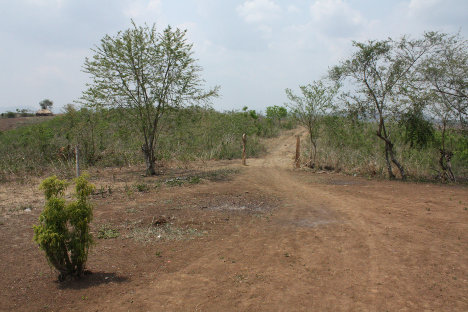 Predio en Morroa (Sucre), en los Montes de María. Foto La Silla Vacía.