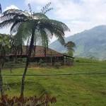 Asesinan a líder social en predio de zona veredal en el Cauca