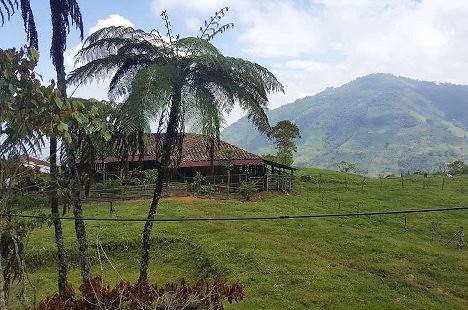 Predio donde fue asesinada la líder social este miércoles en zona rural de Corinto, Cauca. Foto: El País