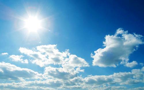 Makanan yang Bisa Melindungi Kulit dari Sinar Matahari