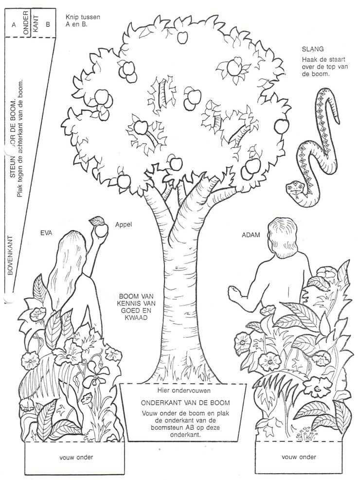 Adam and Eve Worksheets as Well as 36 Best Ot Adam En Eva Adam and Eve Images On Pinterest