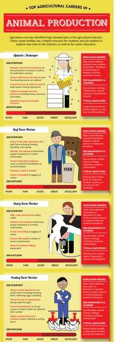 Agriculture Careers Worksheet Also Explore Three Different Careers In the Agricultural Industry Sector