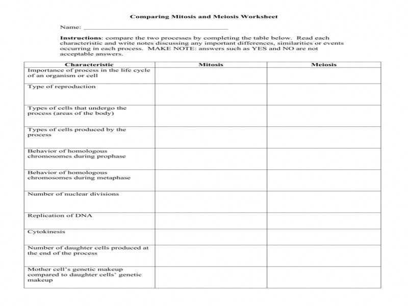 Bozeman Biology Photosynthesis and Respiration Video Worksheet Answers and Worksheet Answers for Biology Kidz Activities