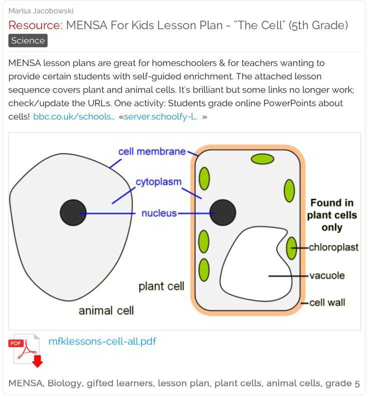 Cell Activity Worksheet and 37 Best Science Biology Images On Pinterest