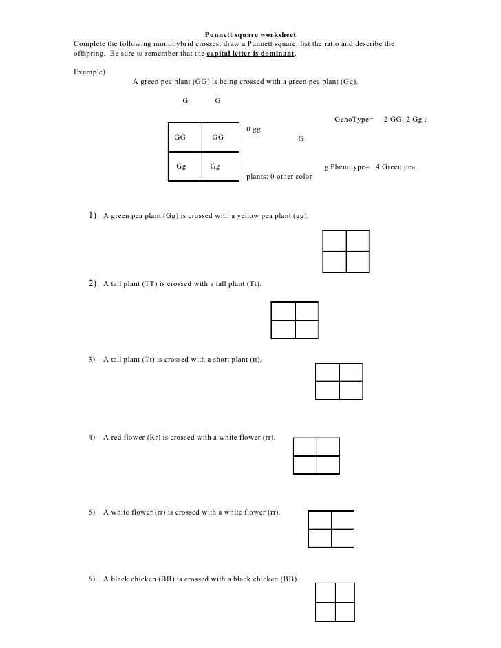 Chapter 11 Introduction to Genetics Worksheet Answers Along with Chapter 11 Introduction to Genetics Worksheet Answers Unique Biology