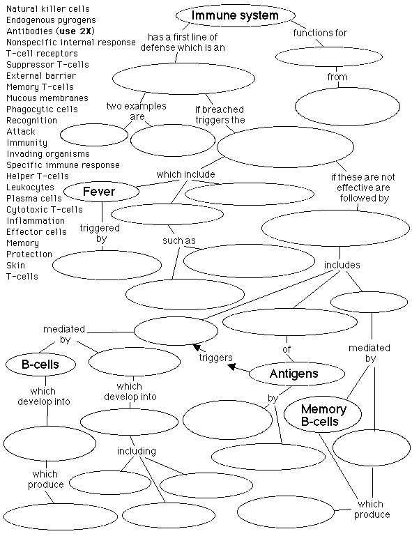 Chapter 24 the Immune System and Disease Worksheet Answer Key Also 136 Best Immune System Images On Pinterest