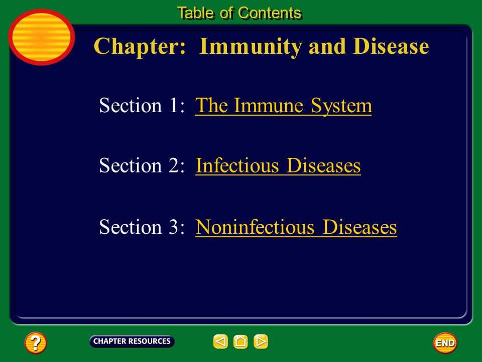 Chapter 24 the Immune System and Disease Worksheet Answer Key together with Chapter Immunity and Disease Table Of Contents Section 3