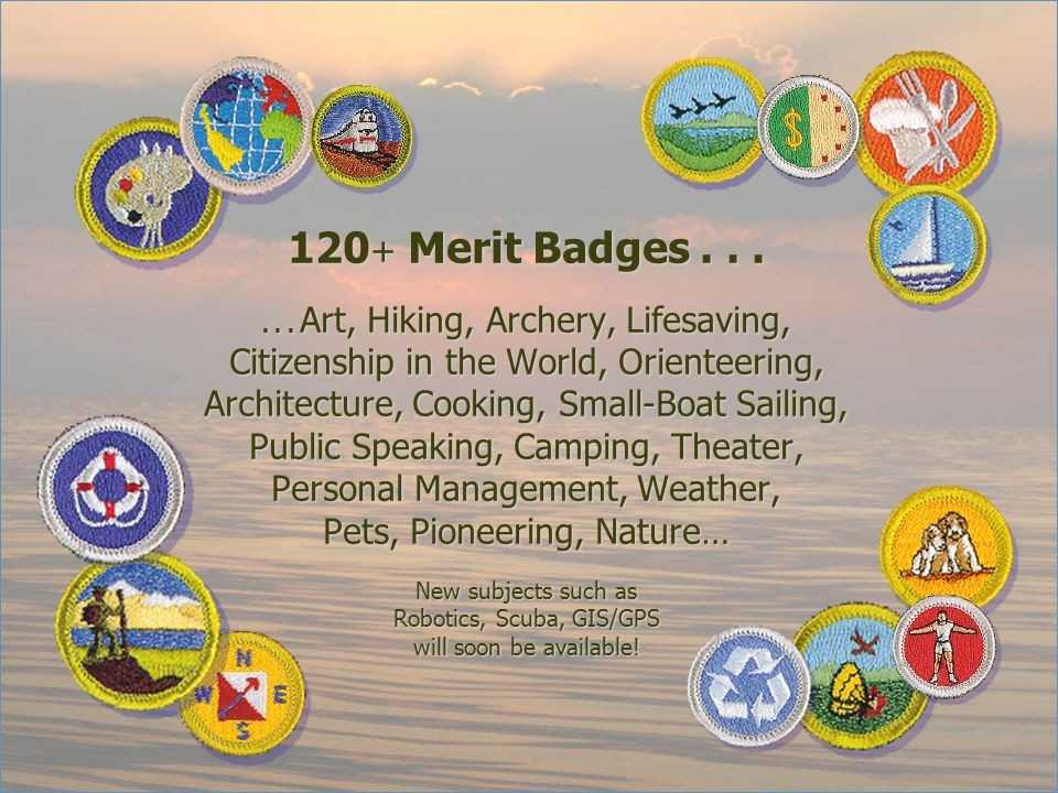 Citizenship In the Nation Merit Badge Worksheet or Personal Management Merit Badge Powerpoint Presentation
