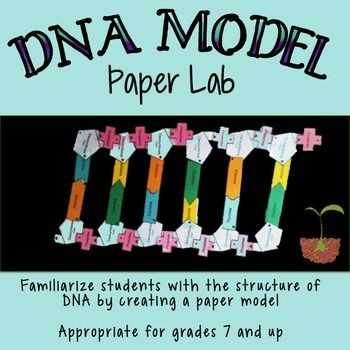 Dna Structure and Function Worksheet together with Dna the Molecule Heredity Worksheet Lovely Dna Structure Lab