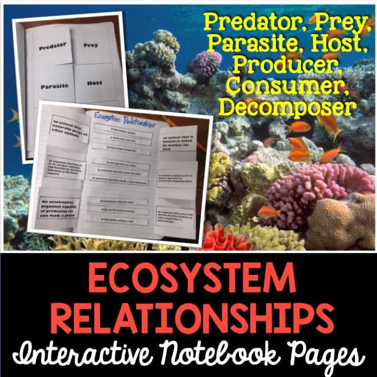 Ecological Relationships Worksheet or Ecosystem Relationships Interactive Notebook Pages