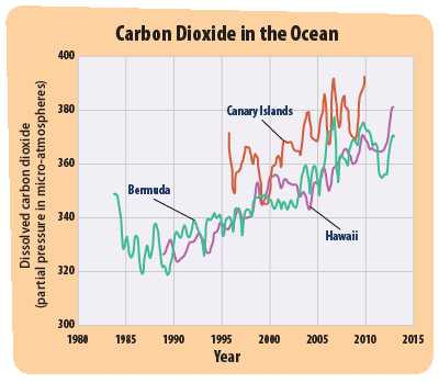 Effects Of Co2 On Plants Worksheet Answers or Increased Ocean Acidity