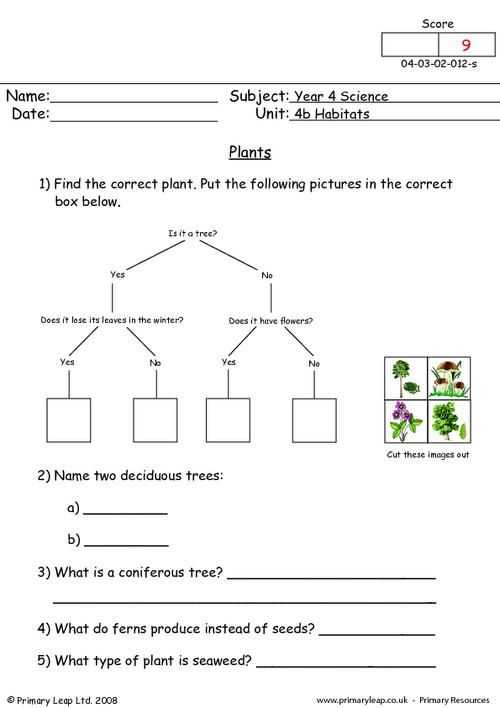Energy Resources Worksheet or Primaryleap Plants Worksheet Plants