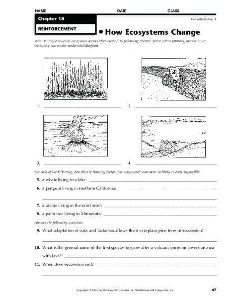 Energy Through Ecosystems Worksheet Also Ecosystem Worksheet Answers Rainforest Ecosystem Worksheet Answers