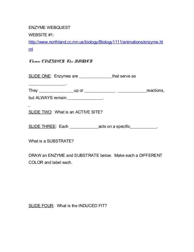 Enzymes and their Functions Worksheet Answers and Ap Biology Enzyme Webquest