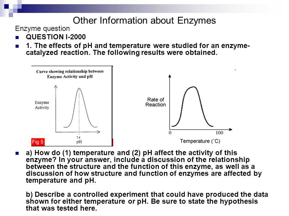 Enzymes and their Functions Worksheet Answers and How to Write Like A top Chef Get A Ghostwriter Time Ap Bio Essay
