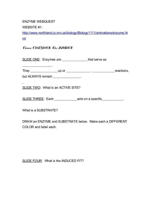 Enzymes and their Functions Worksheet Answers with 37 Lovely Biology Enzymes Worksheet Answers