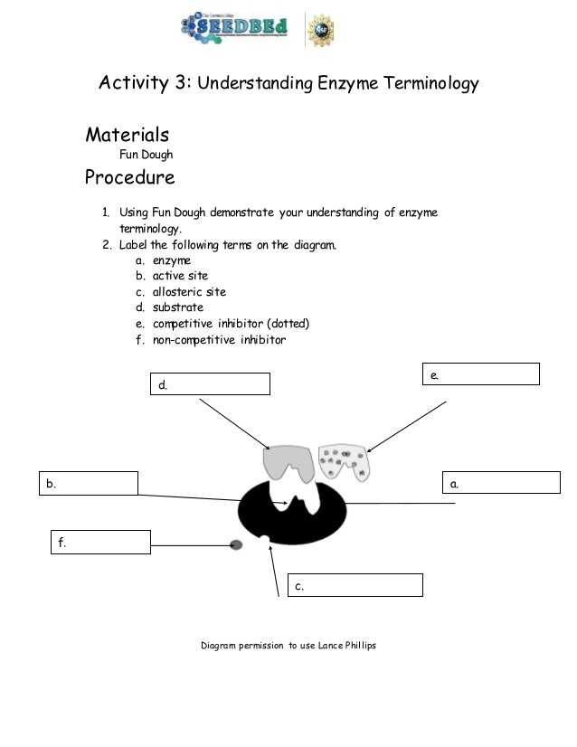 Enzymes Worksheet Answer Key and Biotechnology Timeline