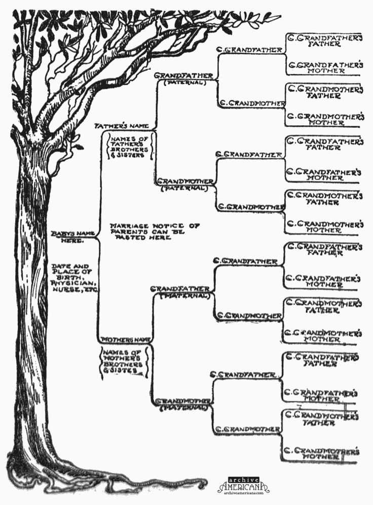 Family Tree Worksheet Along with 17 Best Family Tree Part Three Research Images On Pinterest
