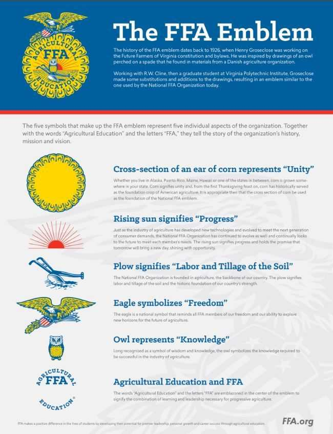 Ffa Officer Duties Worksheet Also 376 Best Ffa Images On Pinterest