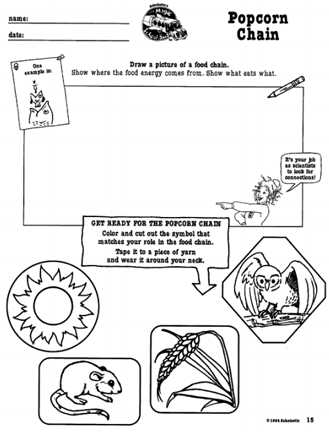 Food Web Worksheet as Well as Here S A Magic School Bus Activity On Food Chains