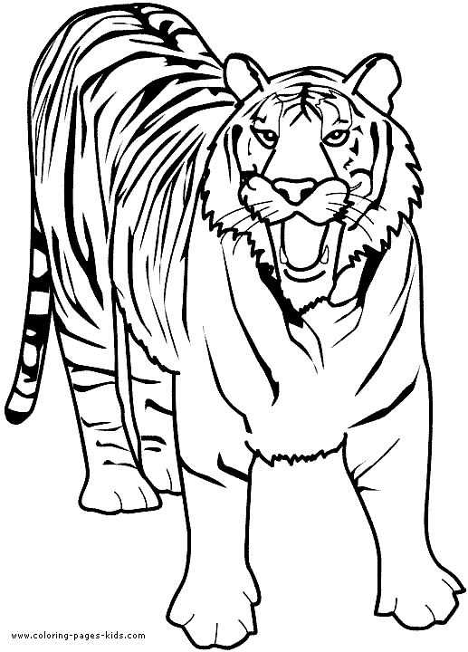 Free Printable Children's Bible Lessons Worksheets together with Colouring Book Tiger