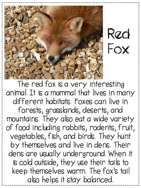 Free Printable Main Idea Worksheets Along with What Does the Fox Say Finding the Main Idea and Details In A