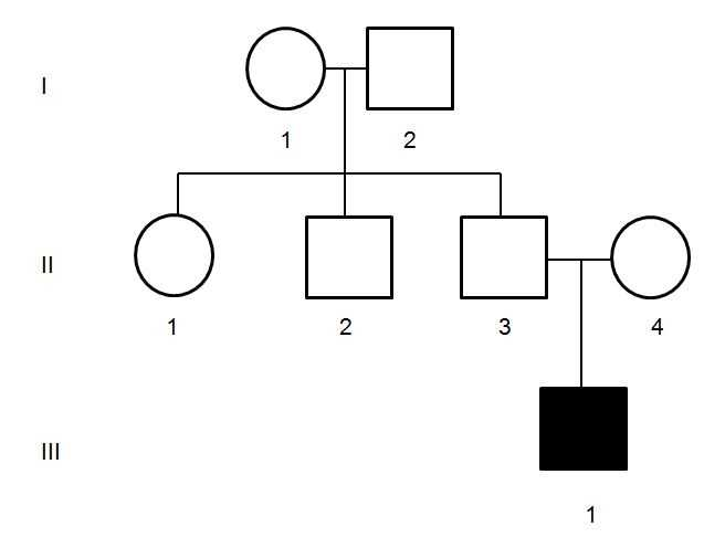 Genetics Pedigree Worksheet Answer Key together with All About Pedigrees Pedigrees for Predicting Genetic Traits