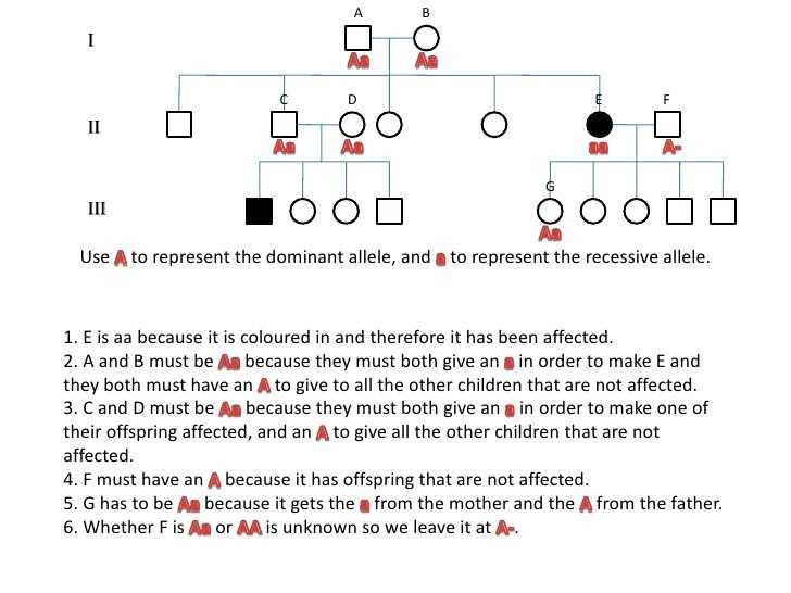 Genetics Pedigree Worksheet Key and Genetics Pedigree Worksheet Cadrecorner