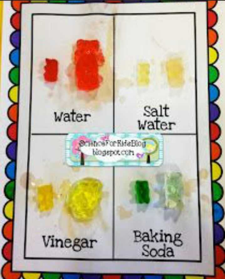 Gummy Bear Science Experiment Worksheet and Ok Cool Science Projects for Kids Science Fair