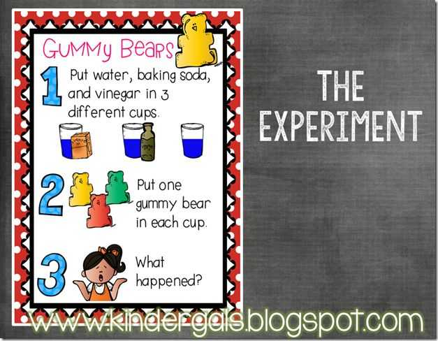 Gummy Bear Science Experiment Worksheet with 13 Best Science Project Images On Pinterest