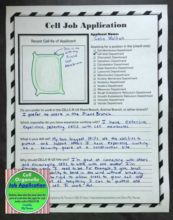 Holt Biology Cells and their Environment Skills Worksheet Answers as Well as 75 Best Cells Images On Pinterest