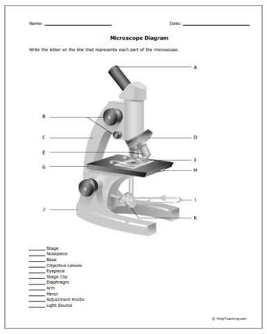 Measuring with A Microscope Worksheet with 122 Besten Free Printable Worksheets Bilder Auf Pinterest