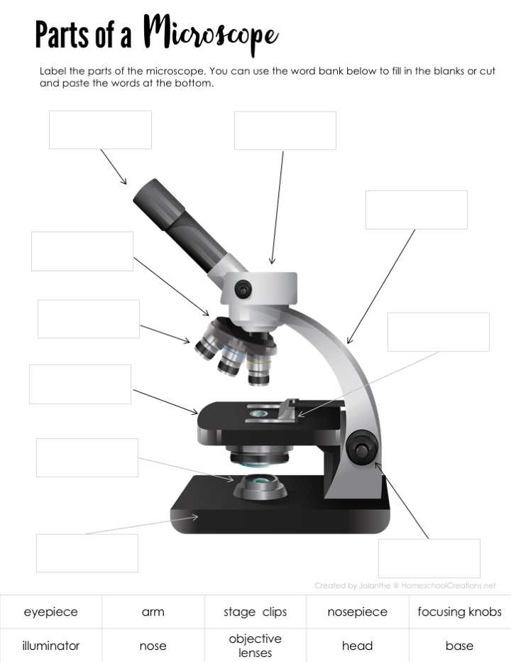 Microscope Parts and Use Worksheet Answer Key Also Parts Of A Microscope Free Printable