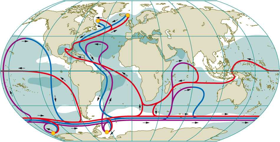 Ocean Surface Currents Worksheet together with Accc Earth Science Wiki Effects Of Salinity On Ocean Current