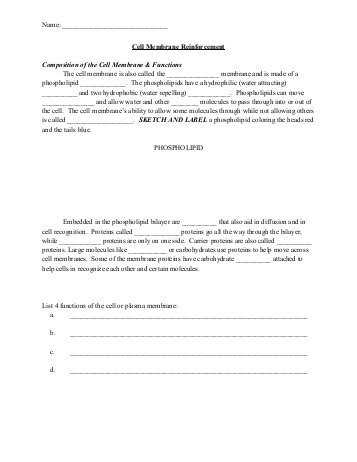 Osmosis and tonicity Worksheet and Worksheets 41 Re Mendations Cell Membrane Coloring Worksheet Full
